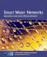 Smart Water Networks: Opportunities in network efficiency optimisation