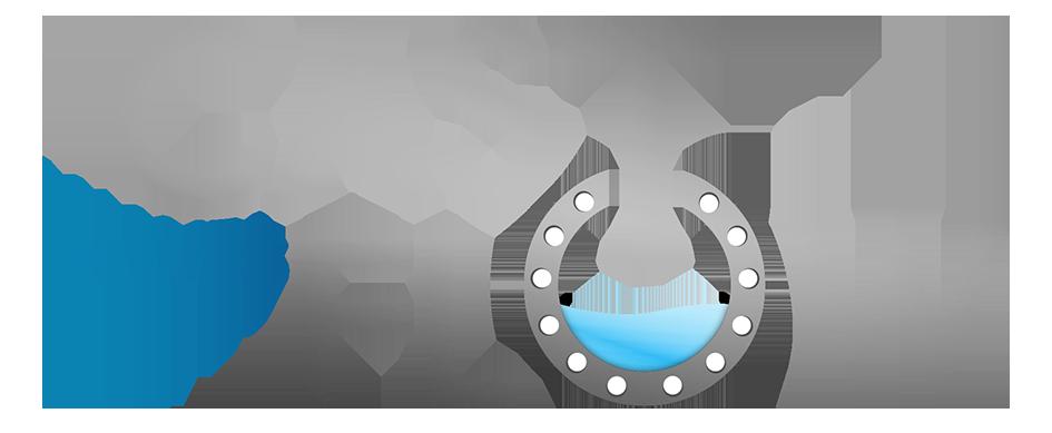 Castflow logo